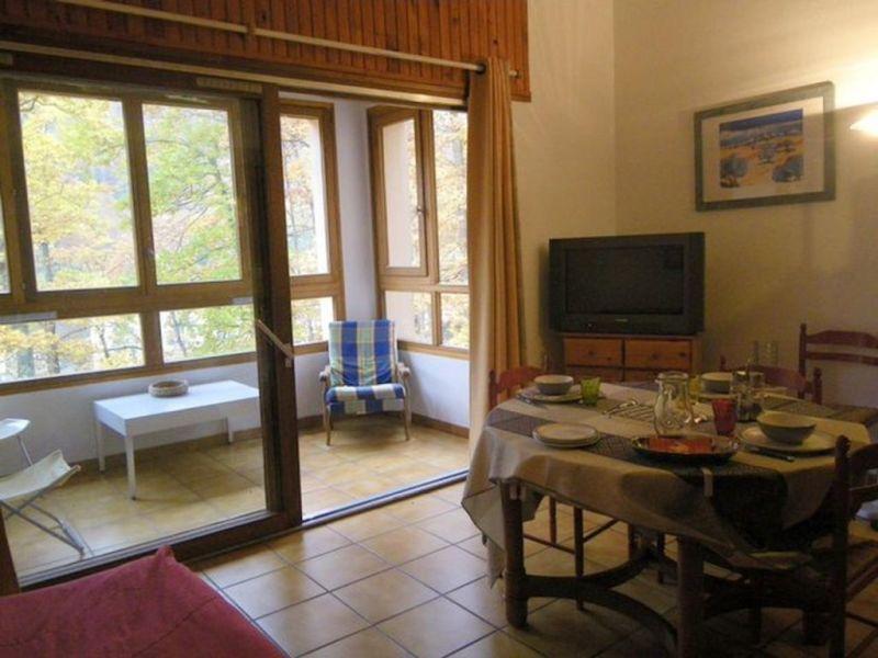 Location vacances appartement Prats de mollo la preste  - Photo 3