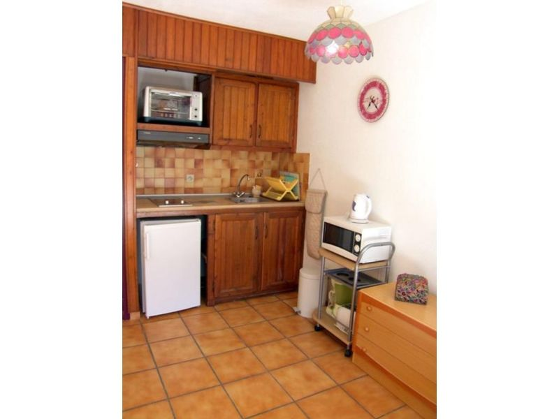 Vacation rental apartment Prats de mollo la preste  - Picture 1