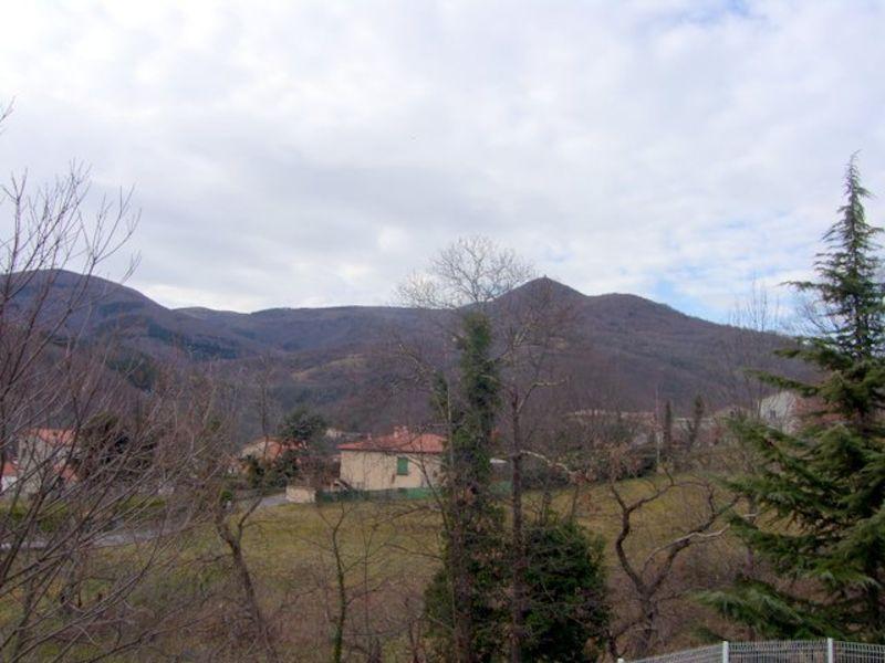 Sale house / villa Prats de mollo la preste 264000€ - Picture 2