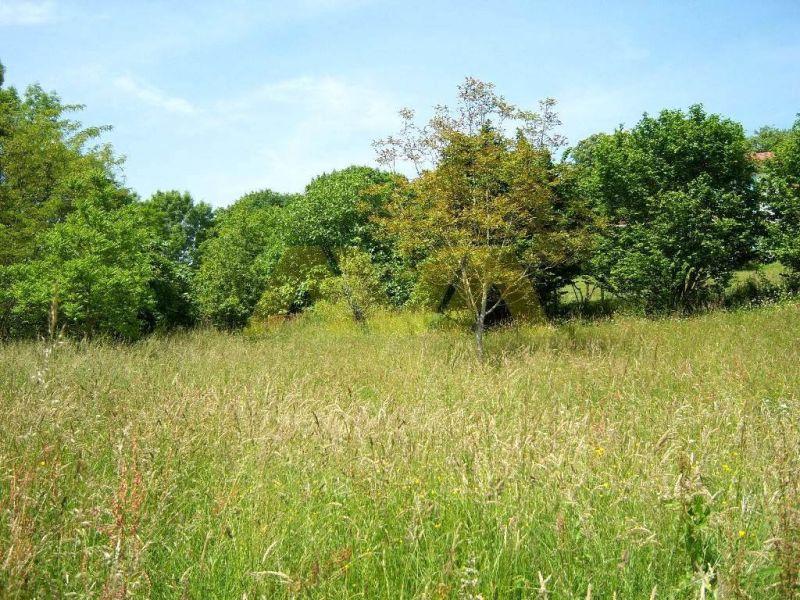 Verkoop  stukken grond Navarrenx 42000€ - Foto 4