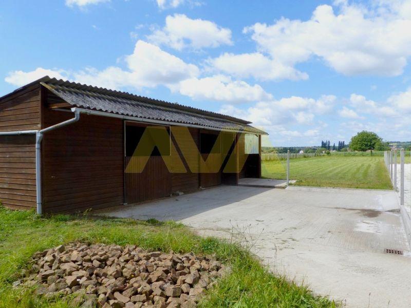 Vente maison / villa Sauveterre-de-béarn 265000€ - Photo 4