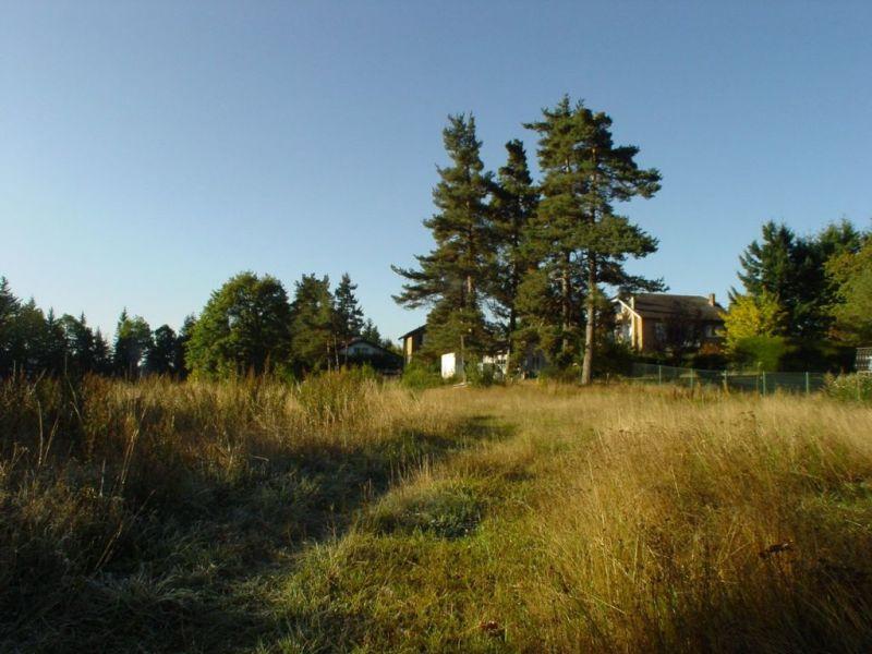 Vente terrain Le chambon sur lignon 38000€ - Photo 2