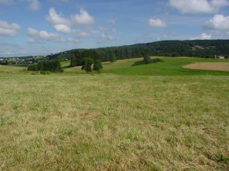 Vente terrain Tence 36500€ - Photo 1