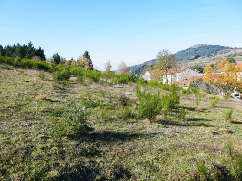 Vente terrain Laussonne 22300€ - Photo 6