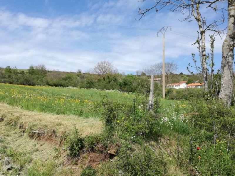Vente terrain Le monastier sur gazeille 26000€ - Photo 1