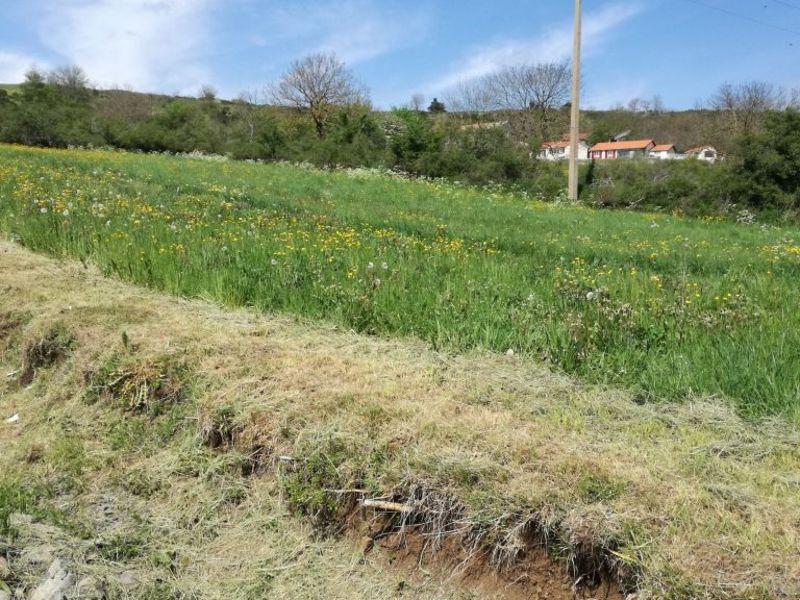 Vente terrain Le monastier sur gazeille 26000€ - Photo 3