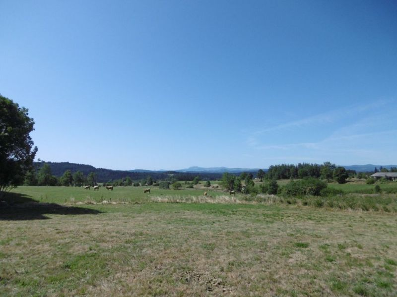 Vente terrain Tence 56500€ - Photo 5