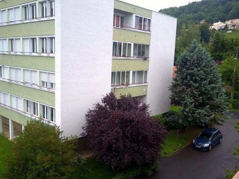 Rental apartment Brives charensac 525€ CC - Picture 7