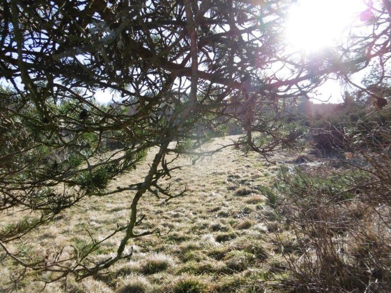 Vente terrain Mazet st voy 23000€ - Photo 1