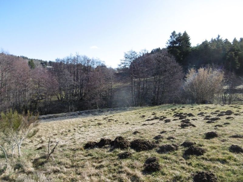 Vente terrain Mazet st voy 23000€ - Photo 5