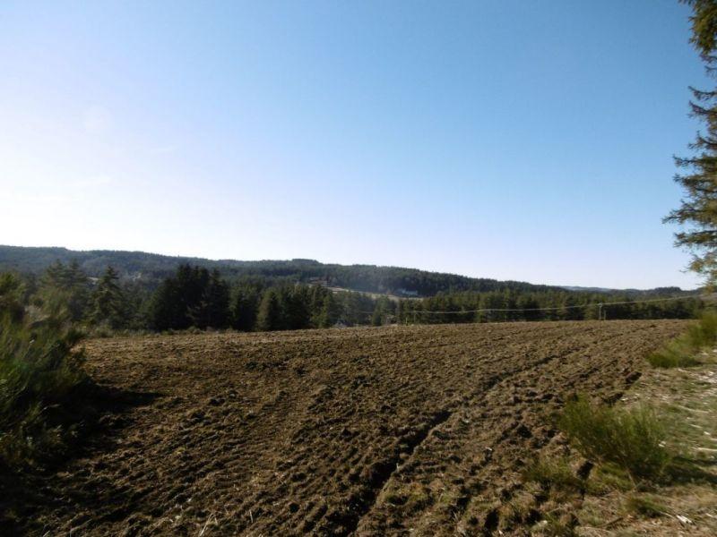 Vente terrain Le chambon sur lignon 55000€ - Photo 4