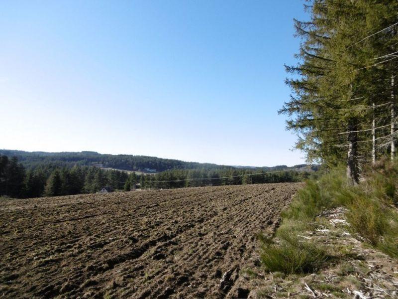 Vente terrain Le chambon sur lignon 55000€ - Photo 5