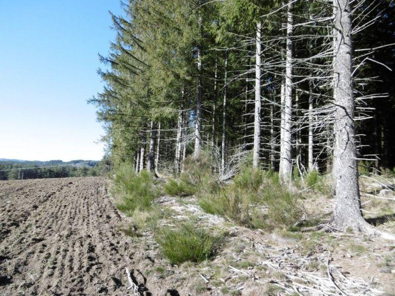 Vente terrain Le chambon sur lignon 55000€ - Photo 6