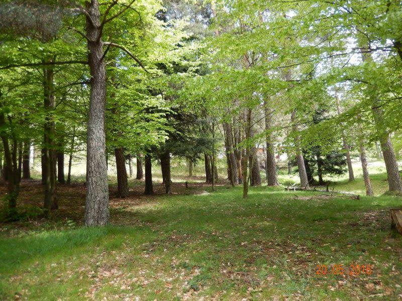 Vente terrain Le chambon sur lignon 25000€ - Photo 1