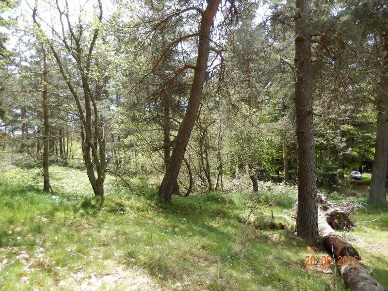 Vente terrain Le chambon sur lignon 25000€ - Photo 2