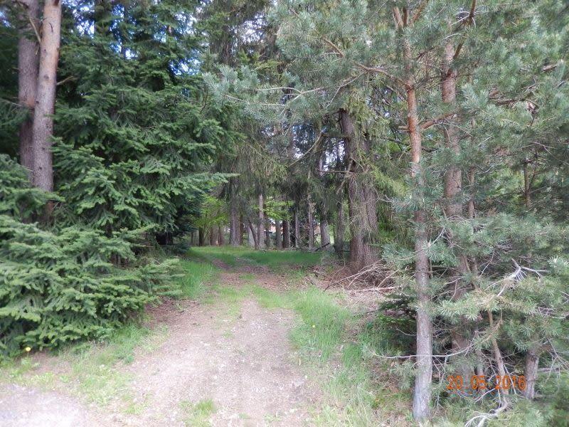 Vente terrain Le chambon sur lignon 25000€ - Photo 4