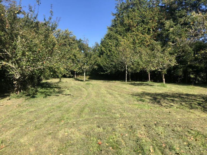 Vente maison / villa Sortosville en beaumont 244500€ - Photo 5