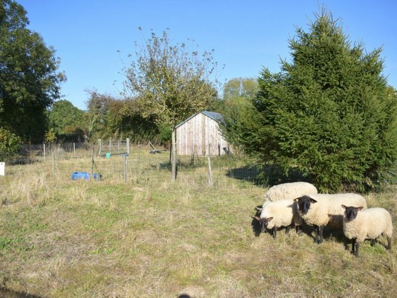 Sale site Orval 25000€ - Picture 4
