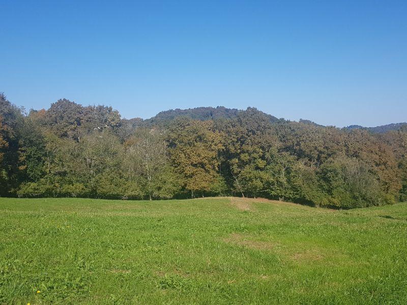 Vente terrain Gan 66000€ - Photo 1