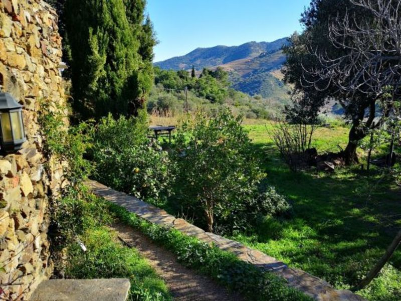 Vente maison / villa Banyuls sur mer 777000€ - Photo 15