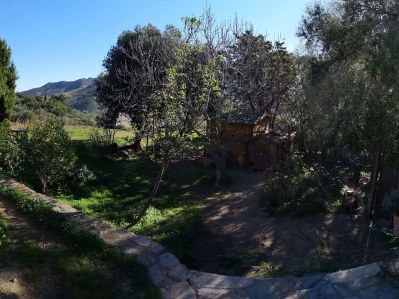 Vente maison / villa Banyuls sur mer 777000€ - Photo 17