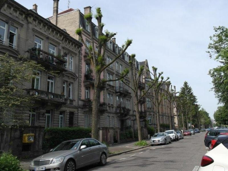 Rental apartment Strasbourg 2280€ CC - Picture 4