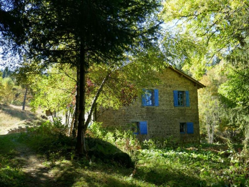 Vente maison / villa Mazet st voy 225000€ - Photo 9