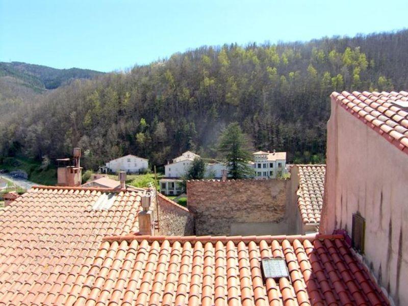 Vente maison / villa Prats de mollo la preste 80000€ - Photo 13