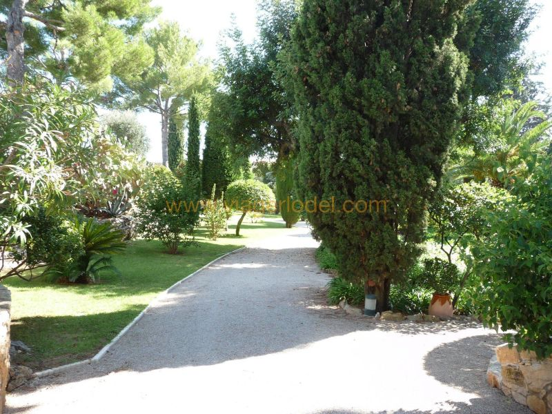Life annuity house / villa Golfe-juan 3 640 000€ - Picture 11
