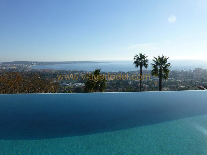 Life annuity house / villa Golfe-juan 3 640 000€ - Picture 15