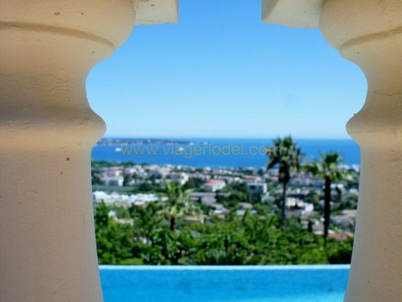 Life annuity house / villa Golfe-juan 3 640 000€ - Picture 16