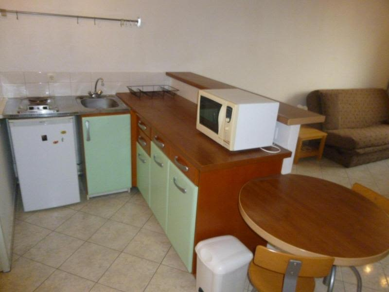 Location appartement Dardilly 506,90€ CC - Photo 4