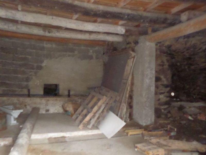 Vente maison / villa Le monastier sur gazeille 55000€ - Photo 11