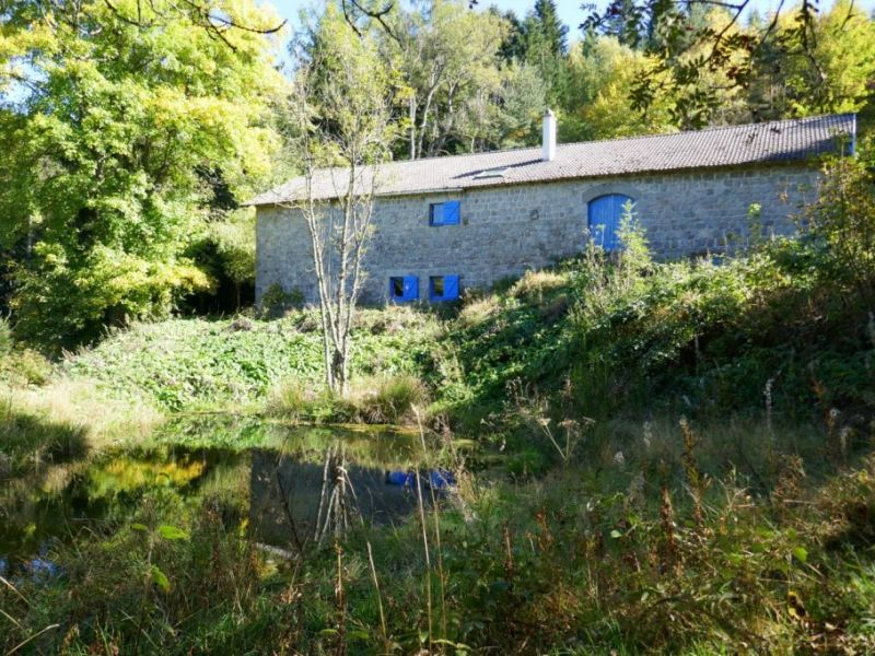 Vente maison / villa Mazet st voy 225000€ - Photo 14