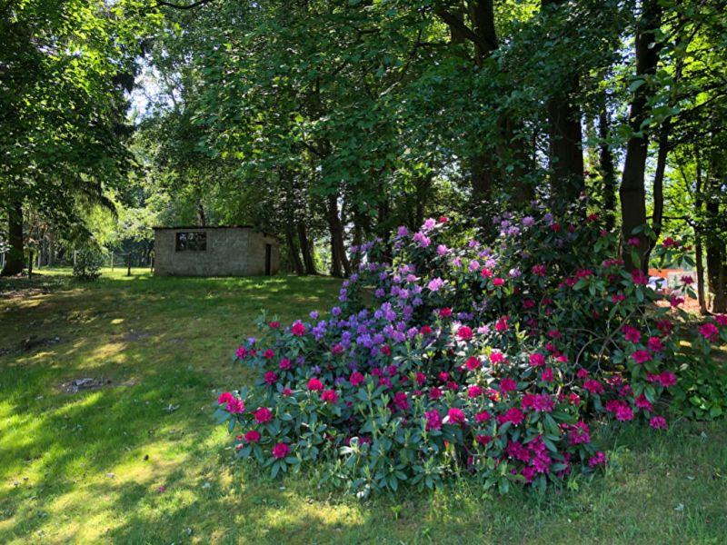 Vente maison / villa Eslettes 272000€ - Photo 7