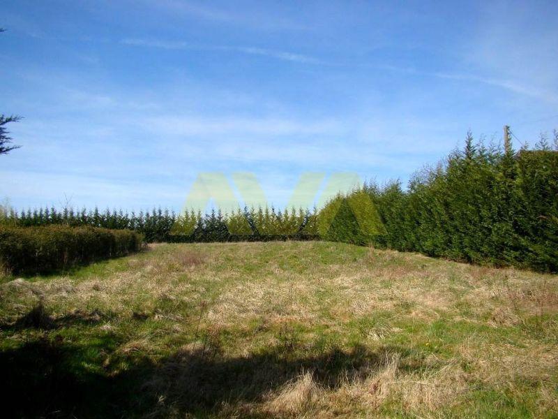 Verkauf grundstück Mauléon-licharre 49050€ - Fotografie 3
