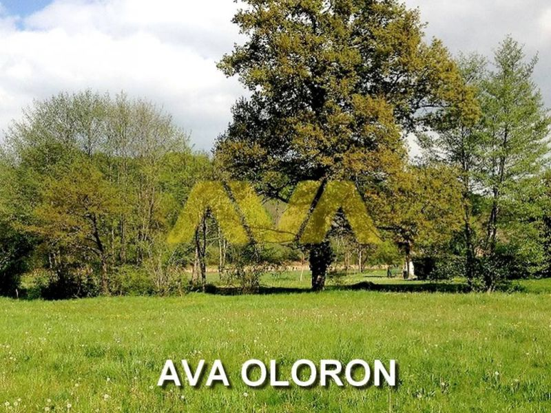 Verkoop  stukken grond Oloron-sainte-marie 52032€ - Foto 1