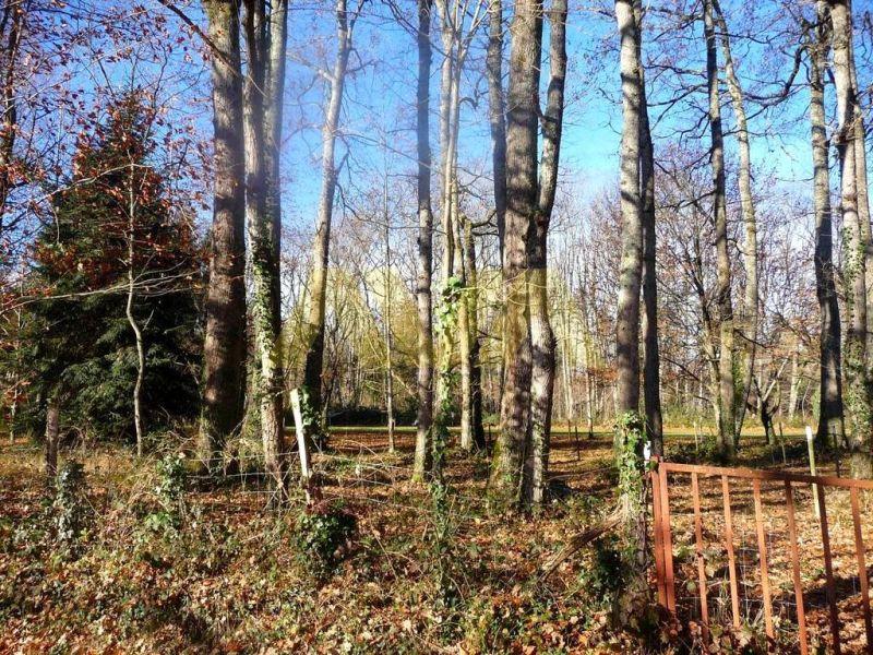 Verkauf grundstück Mauléon-licharre 55000€ - Fotografie 5