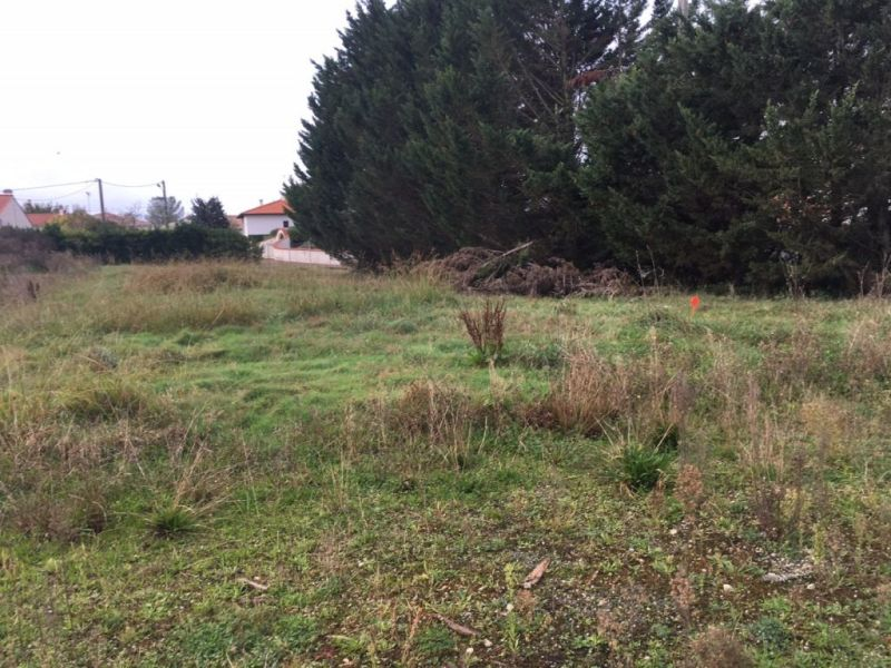 Vente terrain Semussac 51 860€ - Photo 1