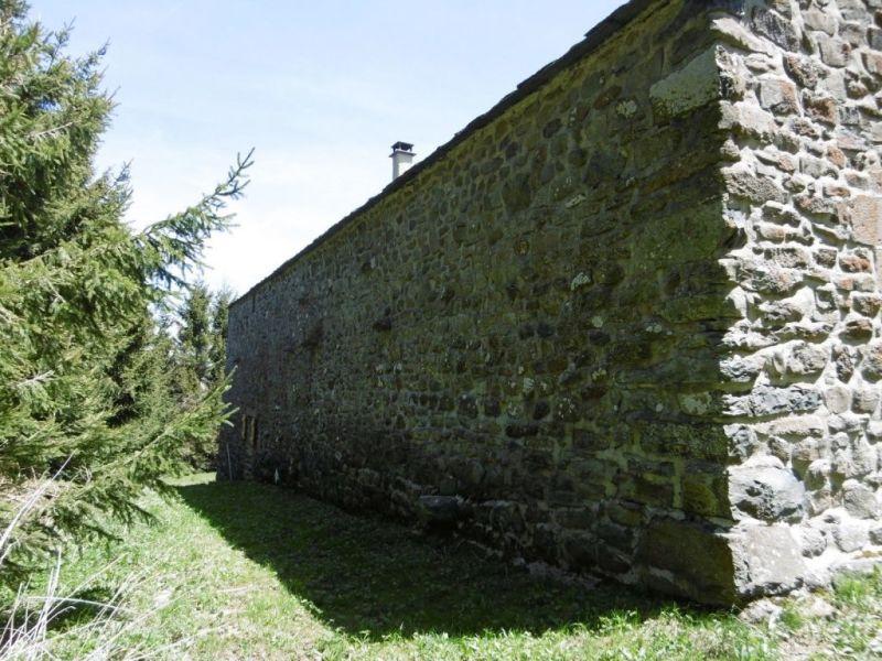 Vente maison / villa Mazet st voy 330000€ - Photo 18