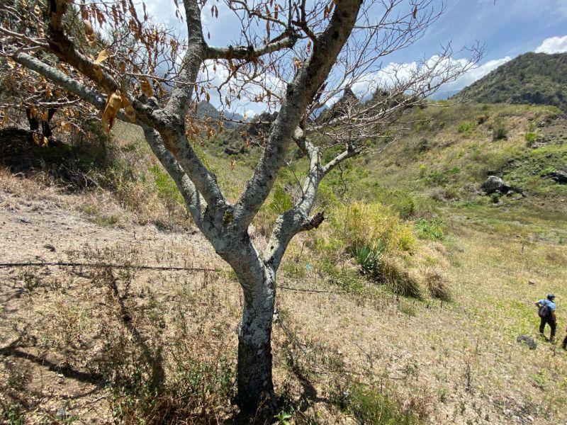 Vente terrain Cilaos 37200€ - Photo 4