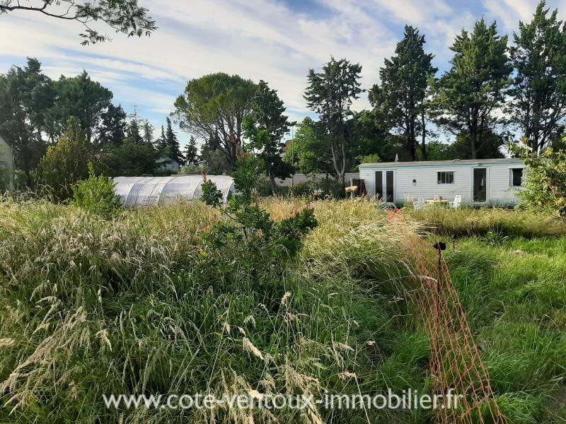 Vente maison / villa Ste cecile les vignes 320000€ - Photo 2