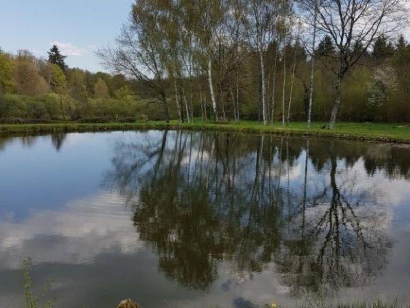 Vente terrain Ambazac 36000€ - Photo 3