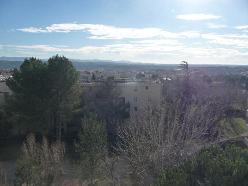 Location appartement Aix en provence 1 270€ CC - Photo 3