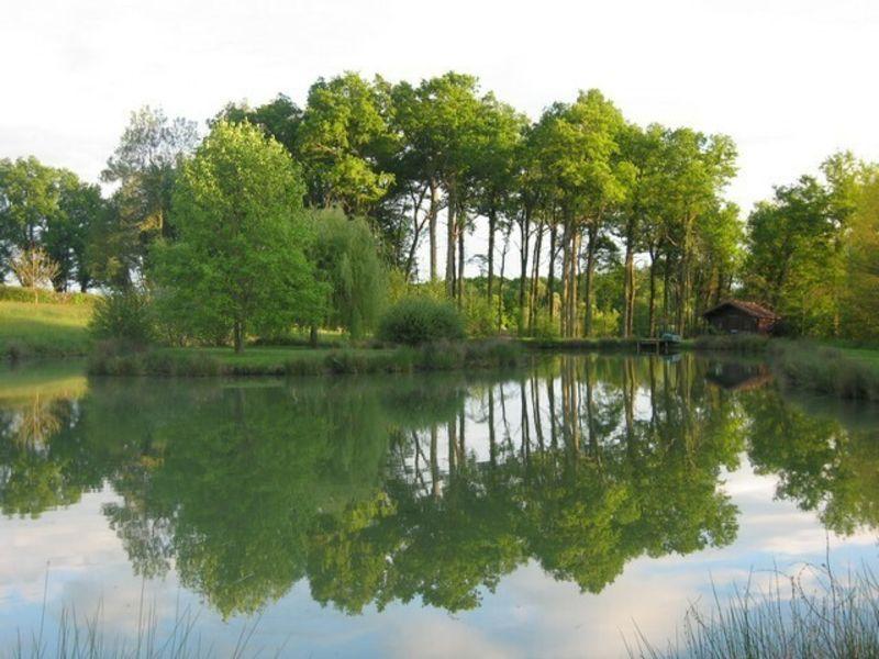 Sale house / villa Louhans 397000€ - Picture 4