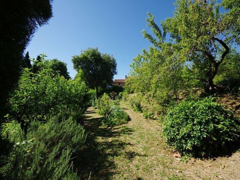 Vente maison / villa Brouilla 572000€ - Photo 6