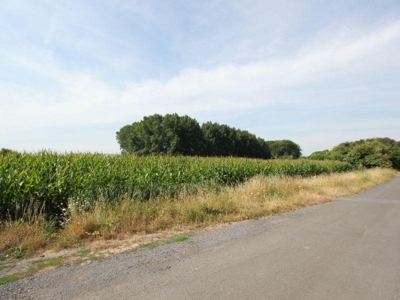 Vente terrain Roost warendin 78000€ - Photo 1