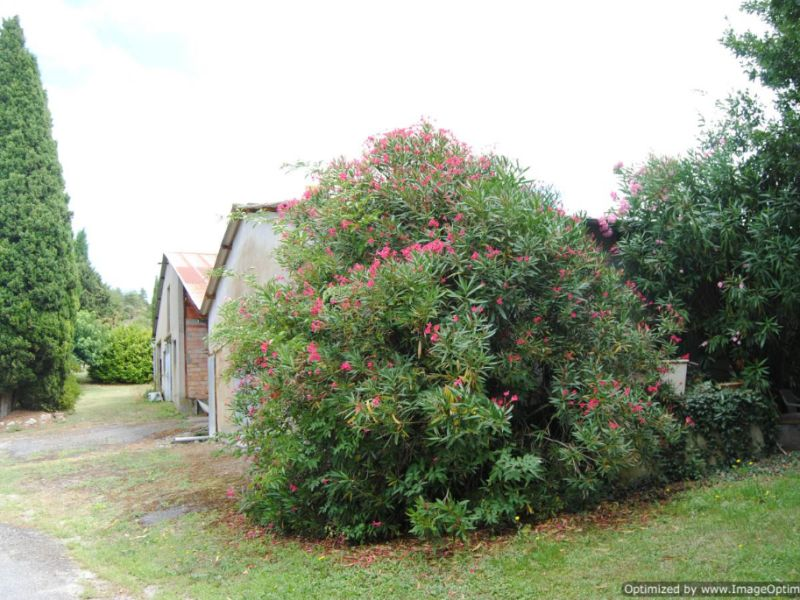 Venta  casa Castelnaudary 499000€ - Fotografía 2