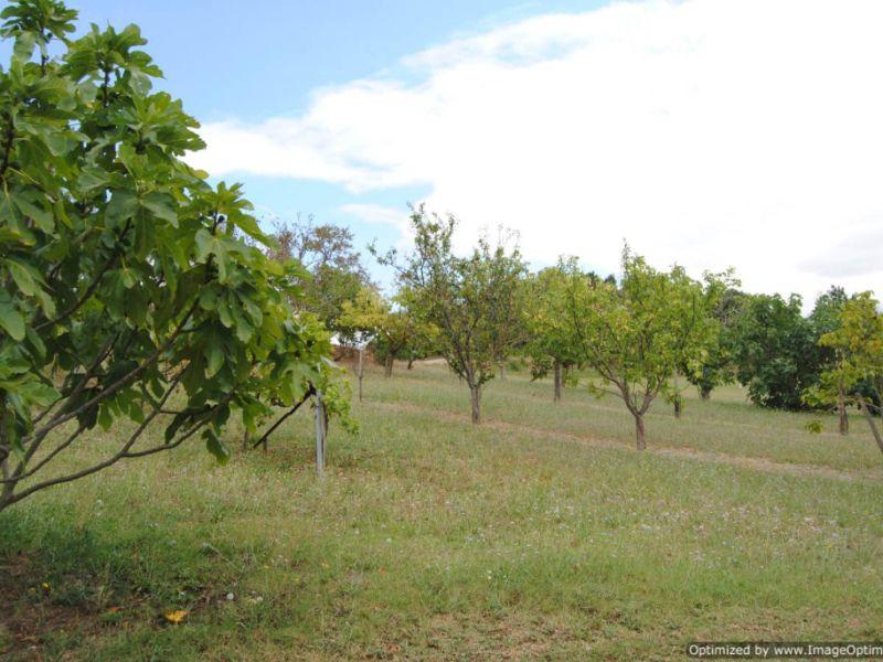 Sale house / villa Castelnaudary 514000€ - Picture 7