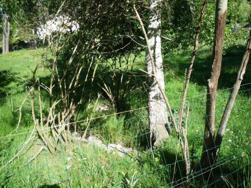 Vente terrain Tence 35000€ - Photo 3